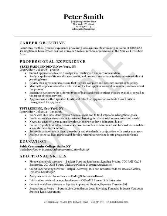 ficer Resume Example