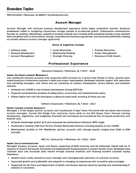 Software Account Manager Resume Example