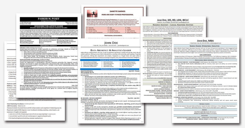 resume examples written by professionals