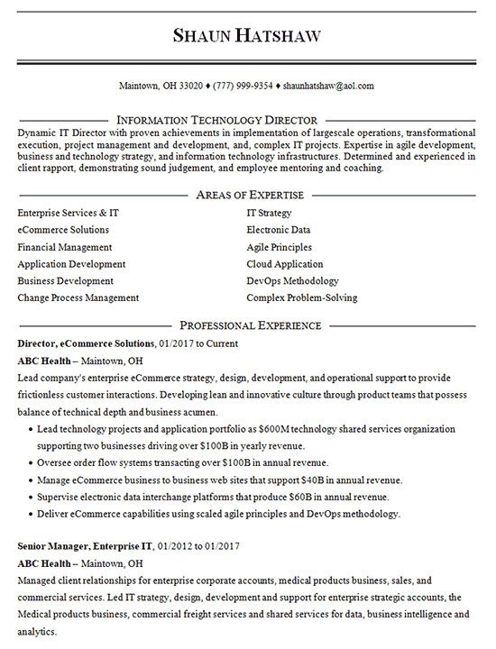 Ecommerce Manager Resume Example It Director