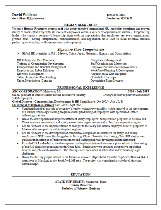Global Human Resources Director Resume Example